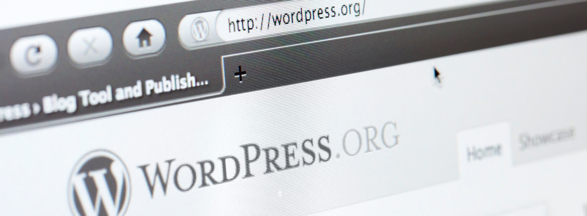 Is WordPress perfect for creating cost effective Websites?