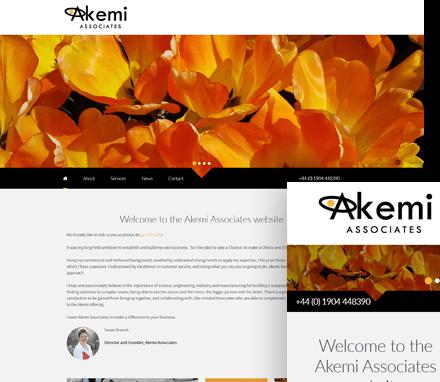 Akemi Associates